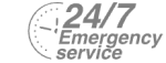 24/7 Emergency Service Pest Control in Camberwell, SE5. Call Now! 020 8166 9746